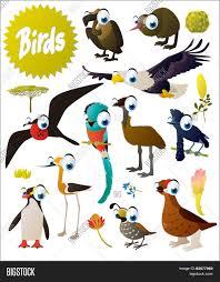 big vector cartoon comic birds set vector u0026 photo bigstock