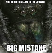 Shower Spider Meme - you tried to kill me in the shower big mistake vengeful spider
