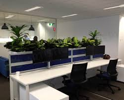 iluka artificial plants for filing cabinets office tambour unit