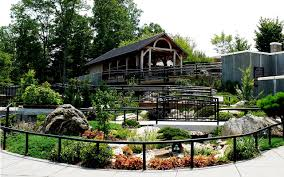 Asheville Nc Botanical Garden by Asheville North Carolina A Southern Town Like No Other