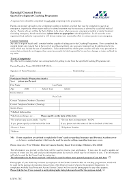 consent form template lisamaurodesign