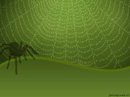 free spider web slide backgrounds for powerpoint animal ppt