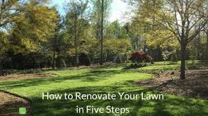 how to renovate your lawn in five steps youtube