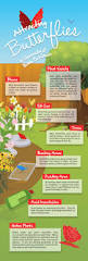 25 best bee friendly plants ideas on pinterest bee friendly