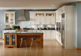 Order Kitchen Cabinets by Fabulous Kitchen Cabinets Online Order Greenvirals Style
