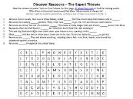 raccoons worksheet download free printable reading comprehension