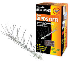 How To Keep Birds Off Your Patio by Bird Repellent Stainless Steel Spikes Kit 12 In Increments