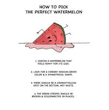 15 best raw food diet 101 images on pinterest food network