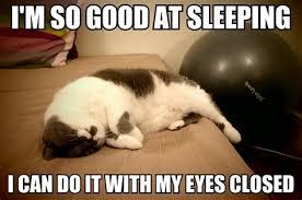 Lazy Meme - lazy meme from lazy quotes quotesgram pin lazy meme on