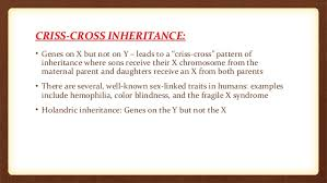 criss cross inheritance
