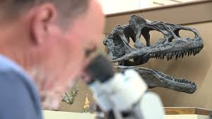 excavating utahraptor herd turns to for donations ksl