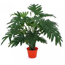 philodendron high quality replica philodendron xanadu maxifleur artificial plants
