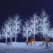 Lighted Outdoor Christmas Displays by 72 Best Outdoor Christmas Displays Images On Pinterest