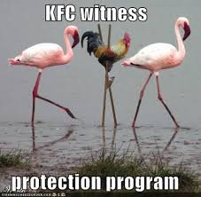 Rooster Meme - rooster meme city