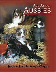 australian shepherd upkeep all about aussies the australian shepherd dog from a to z