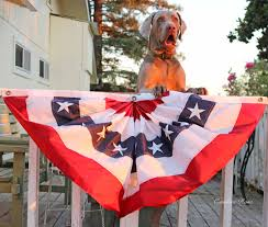 2017 4th of july sales for furniture home decor and fashion lovers candace rose weimaraner fred 4th of july bunting sale home decor furniture fashion summer 2017