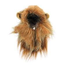 lion halloween costume animal planet u0027s lion halloween dog costume with same day shipping