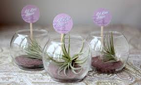 diy mini terrariums as guest favors weddingomania