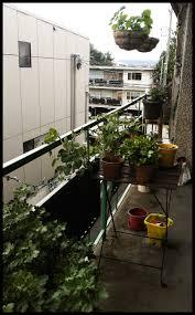 my balcony garden is the best little garden emphyria