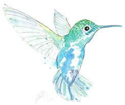 blue hummingbird by jessica rb on deviantart