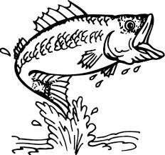 get this dolphin coloring pages for kids 41745
