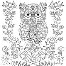 712 best coloring owls images on pinterest coloring books
