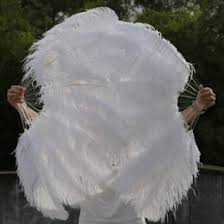 large feather fans large burlesque fans nz buy new large burlesque fans online from