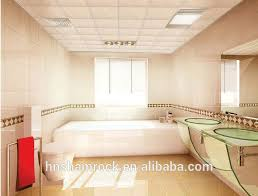 Drop Ceiling Tiles For Bathroom Suspended Ceiling Tiles For Bathrooms Thedancingparent Com