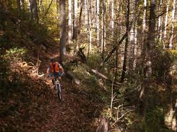 Dupont State Forest Trail Map by Five2ride 5 Of The Best Mountain Bike Trails In North Carolina