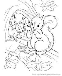 wild animal coloring pages squirrel family coloring page and