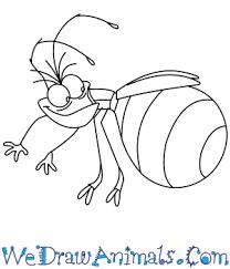 draw ray princess frog