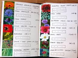 flower flower garden plans layout