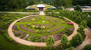 Botanic Garden Glencoe Chicago Botanic Garden Concludes Largest Green Roof Plant Study In