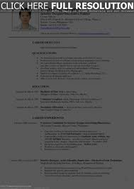 Resume Example Pdf Download by Glamorous Interior Designer Resume Upcvup Format Doc Curriculum