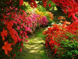 beautiful garden pictures beautiful gardens o worlds most classic