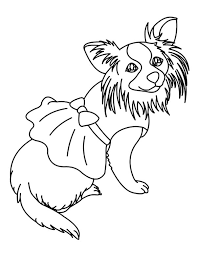 chihuahua dog dress coloring pages netart