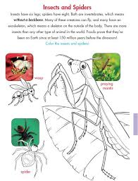 new 154 first grade insect worksheets firstgrade worksheet