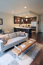 Soft Area Rug Fluffy Area Rugs Home Design Ideas And Pictures