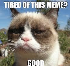 Good Cat Meme - evil cat meme good bigking keywords and pictures