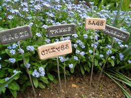 Vegetable Garden Labels by 62 Best Gardening Images On Pinterest Gardening Plants And
