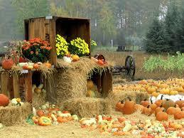 fall pumpkin wallpapers download free fall pictures desktop wallpaper gallery