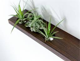 ikea planter hack weekend whimsy ikea hack for air plants a spoonful of pretty