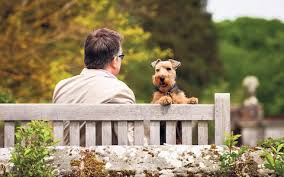 the best gardens to visit with dogs the telegraph