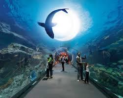 itinerary dubai00156 u2013 als destinations