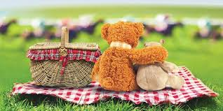 teddy bears teddy bears picnic events the weekend edition