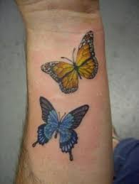 images about butterfly ideas on butterfly