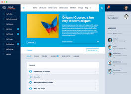 self design home learners network social learner learndash on buddypress