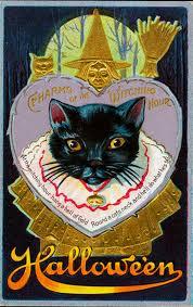 hand drawn vintage halloween creepy cat vector set colour fills