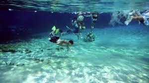 rainbow springs filmed underwater w a dslr on vimeo