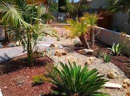 drought tolerant landscape design plans with subtropis decoration